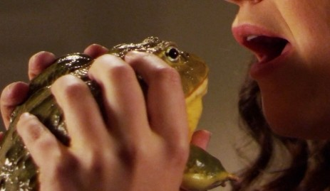 Öptüğünüz kurbağa prense dönüşmezse…