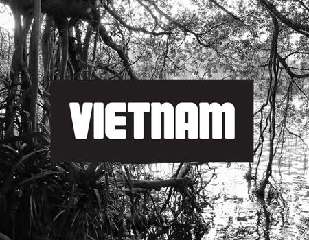 Vietnam'da terfi