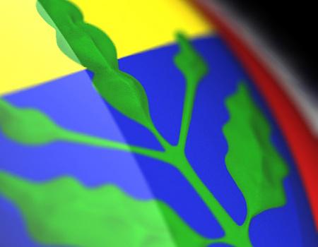 MNG Kargo'nun logosu Fenerbahçeli oyuncuların şortlarında yer alacak.