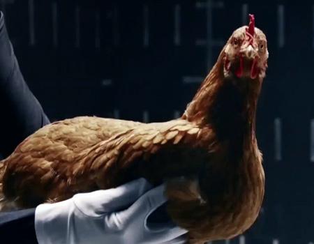 Mercedes akıllı sürüş sistemini tavukla örnekliyor