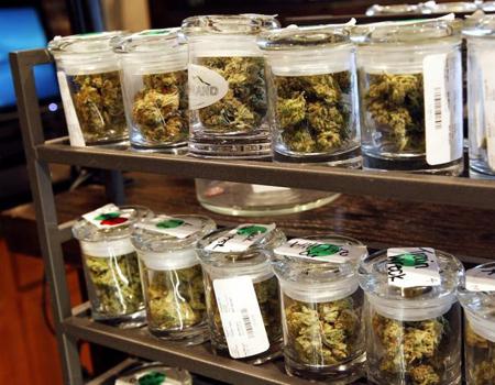 ABD'de legalleşen bitkinin pazarlaması zor olacak gibi görünüyor.