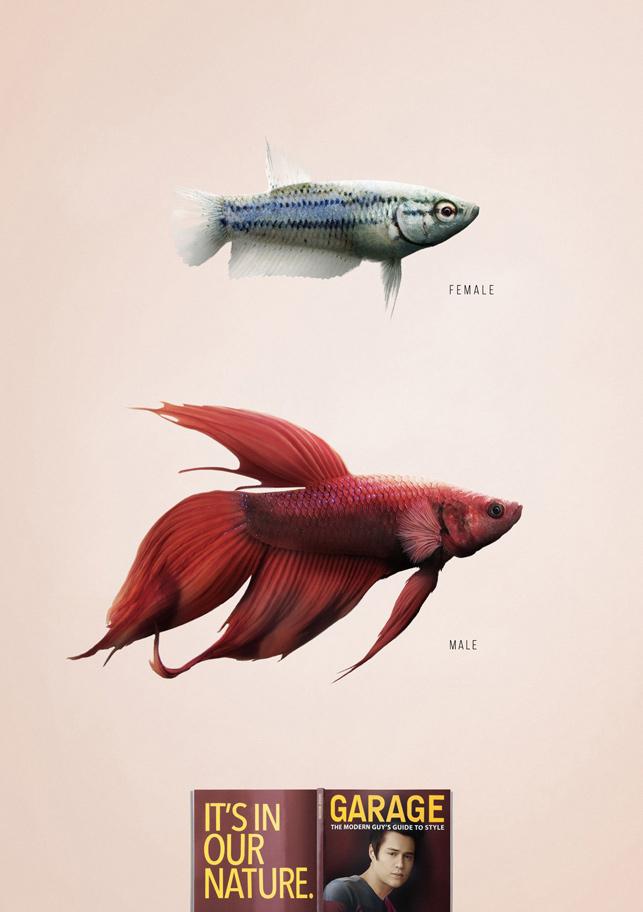 Garage Magazine: Havalı olmak erkeğin doğasında var - Balık