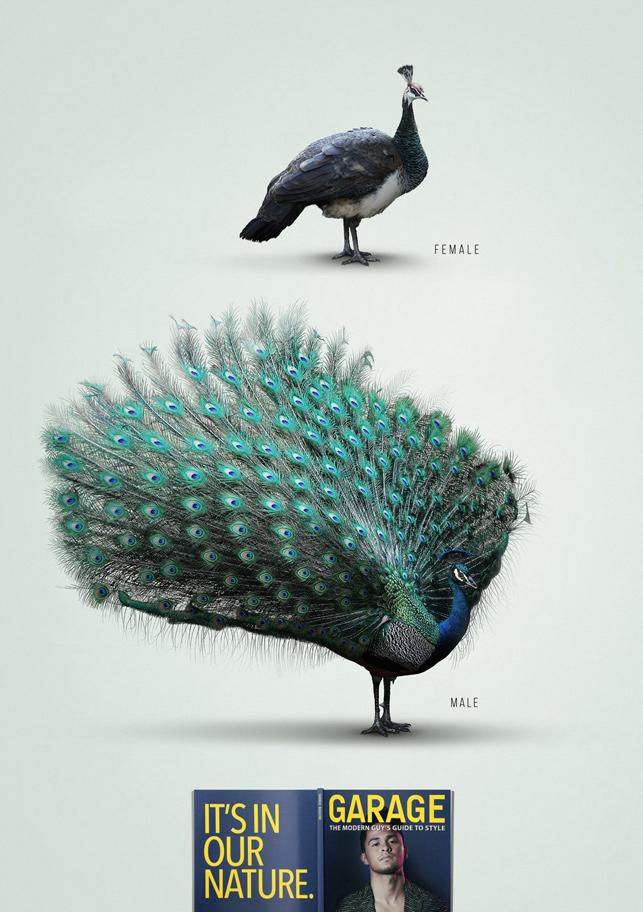 Garage Magazine: Havalı olmak erkeğin doğasında var - Tavus Kuşu