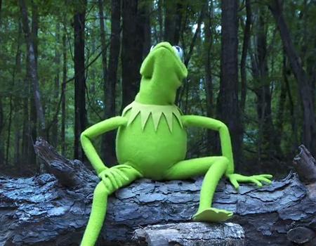 Kermit çırılçıplak Ice Bucket Challenge yaparsa…