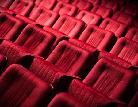 Sinema, tiyatro, opera, salon