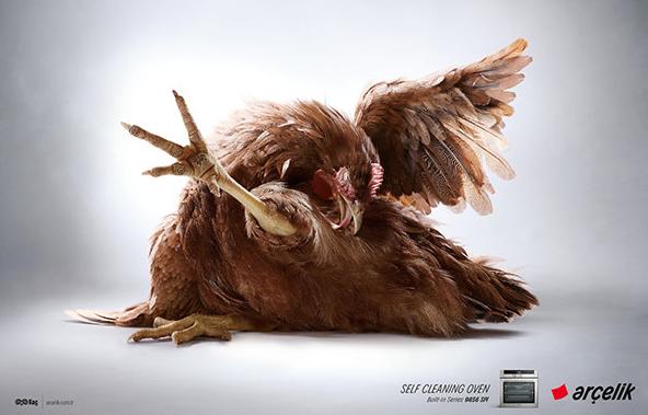 Kendini Kendini Temizleyen Fırın: Tavuk