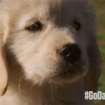 GoDaddy'den hedefi ıskalayan Super Bowl reklamı