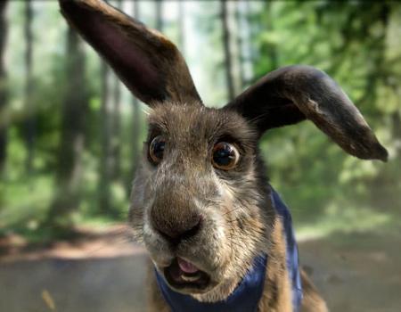 Mercedes'ten 9 milyon dolarlık kaplumbağa-tavşan hikâyesi