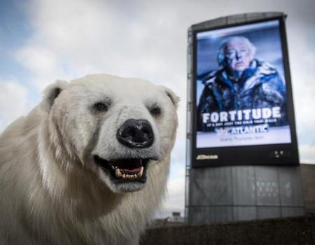Londralıların kutup ayısı ile sınavı