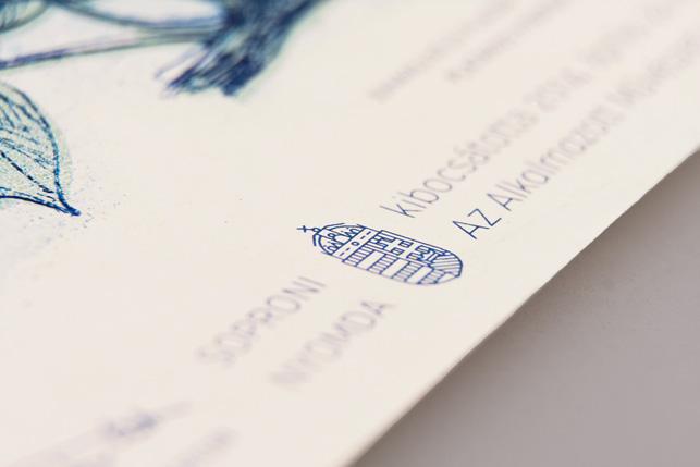 Macar tasarımcıdan konsept banknotlar