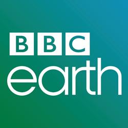 Natasha Hussain, BBC Earth'ü MediaCat'e anlattı