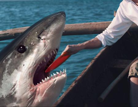 Efsane gazozdan köpekbalığı terbiyecisi