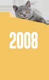 Felis'in zaman tünelinde yolculuk: 2008