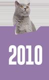 Felis'in zaman tünelinde yolculuk: 2010