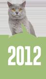 Felis'in zaman tünelinde yolculuk: 2012