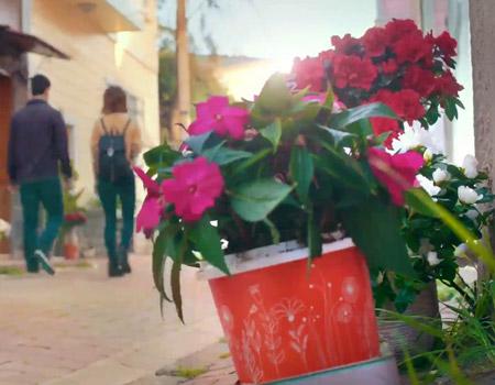 Pınar Yoğurt'tan dekoratif bahar kreasyonu