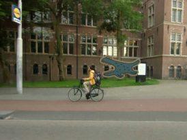 Amsterdam tramvaylarında bir canavar
