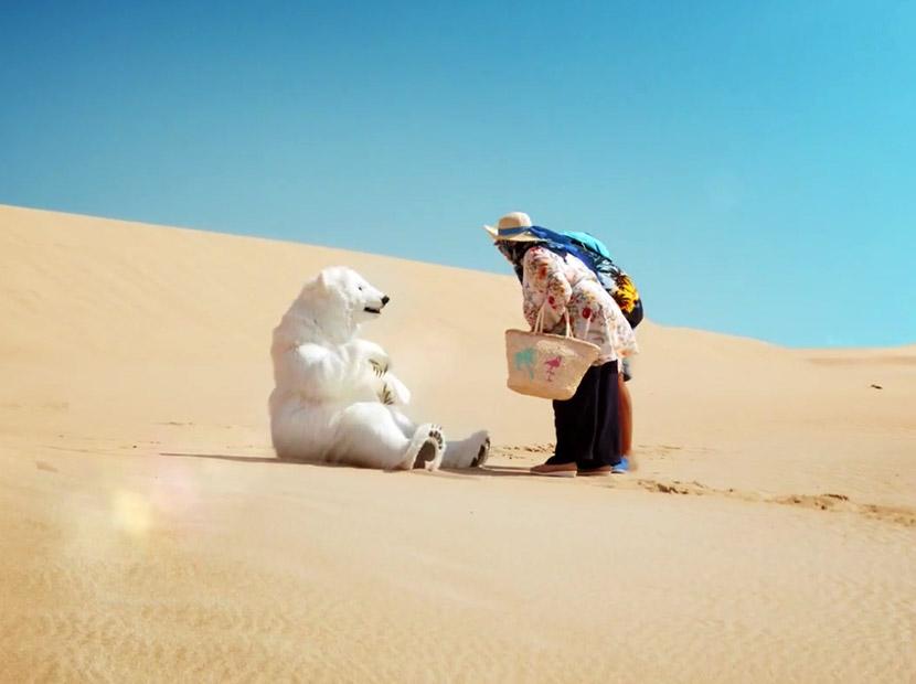 Çölde bir bahtsız kutup ayısı