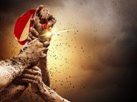 The Cat Report: 2016'nın en yaratıcı ajansları