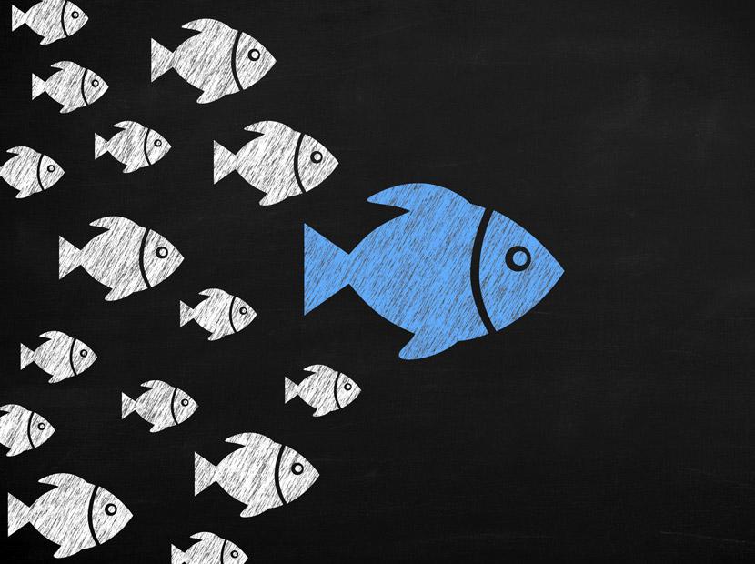 Influencer Marketing: Bir kazan-kazan hikâyesi