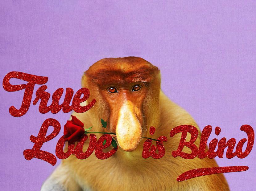 Çünkü gerçek aşkın gözü kördür