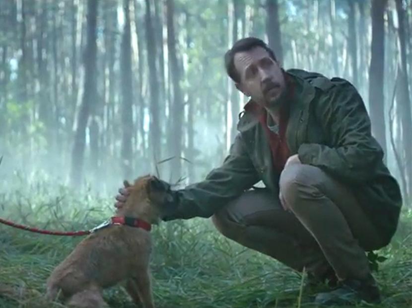 Bir köpek iki hikâye