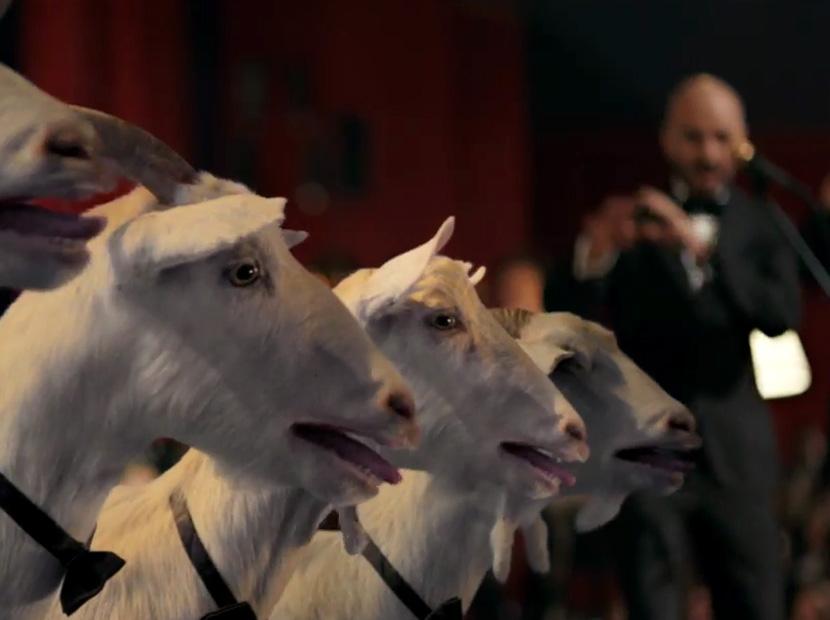 4 keçi 1 Soner Sarıkabadayı