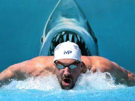 Michael Phelps'in son rakibi köpekbalığı