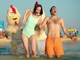 Plajda terbiyesiz tavuk saldırısı