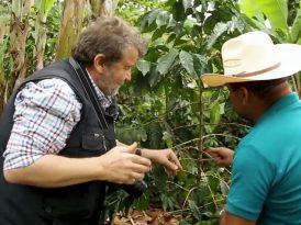 Nescafé'den kahve belgeseli