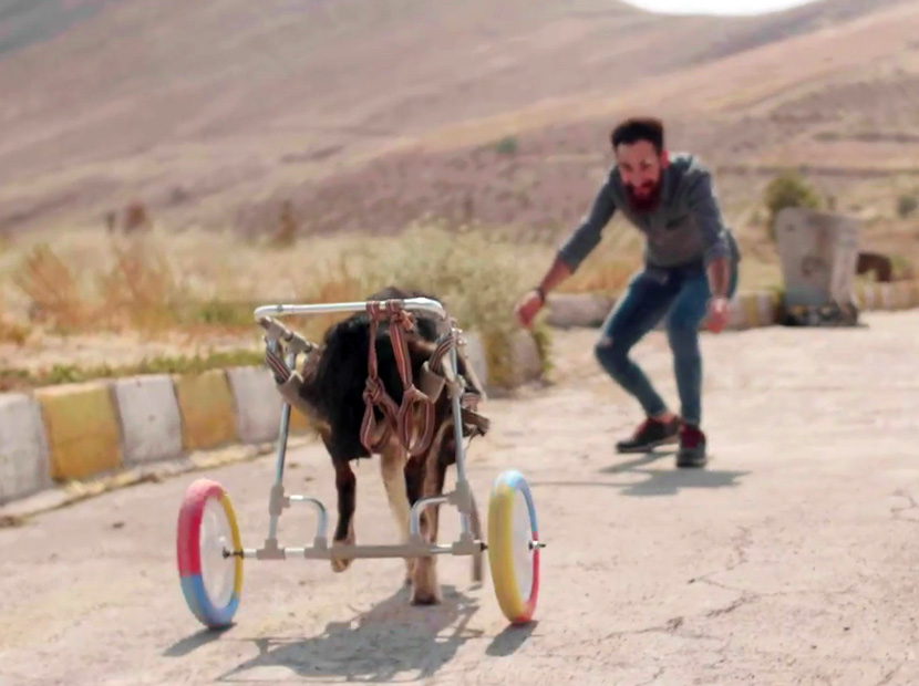 """Mardin'de bir """"hayat tamircisi"""""""