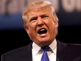 Twitter bir süreliğine Trump'sız kaldı