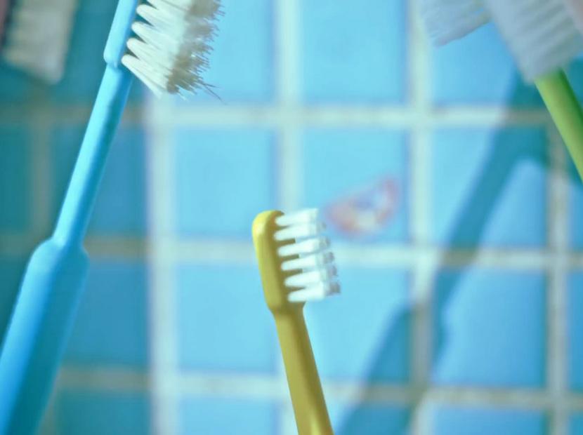 Diş fırçaları da sever