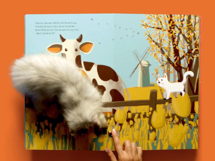 Kediler için oyun kitabı