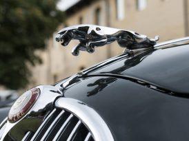 Jaguar ve Land Rover Türkiye'nin sosyal medya konkuru sonuçlandı