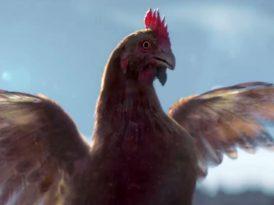 Hindi uçar tavuk kalır