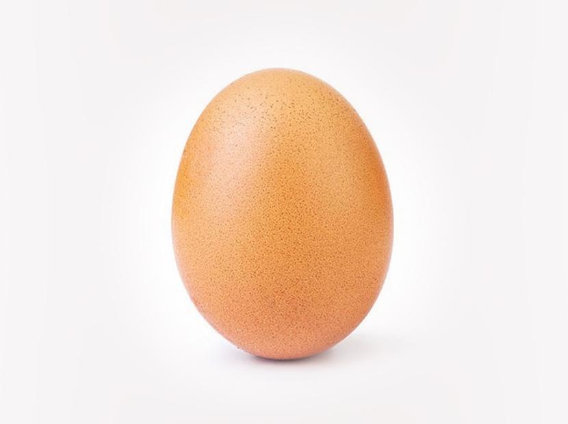 Rekortmen yumurta çatladı