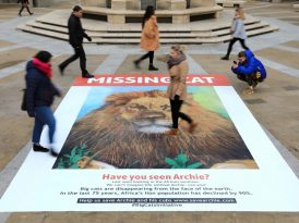 Yavaş yavaş kaybolan bir kayıp ilanı