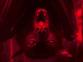 Bir vampir neden kana ihtiyaç duyar?