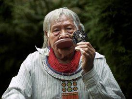 Amazon tahribatına karşı Vicdan Kodu