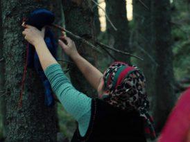 Greenpeace'den ormanları koruma büyüsü