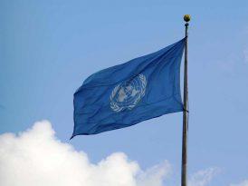 Talenthouse'dan BM'nin kreatiflere çağrısına destek