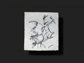 Bağış amaçlı tuvalet kağıdı sanatı