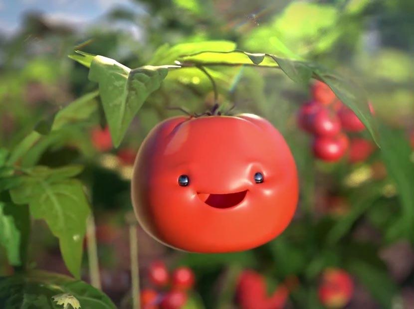 Sevimli domatesin güneş aşkı