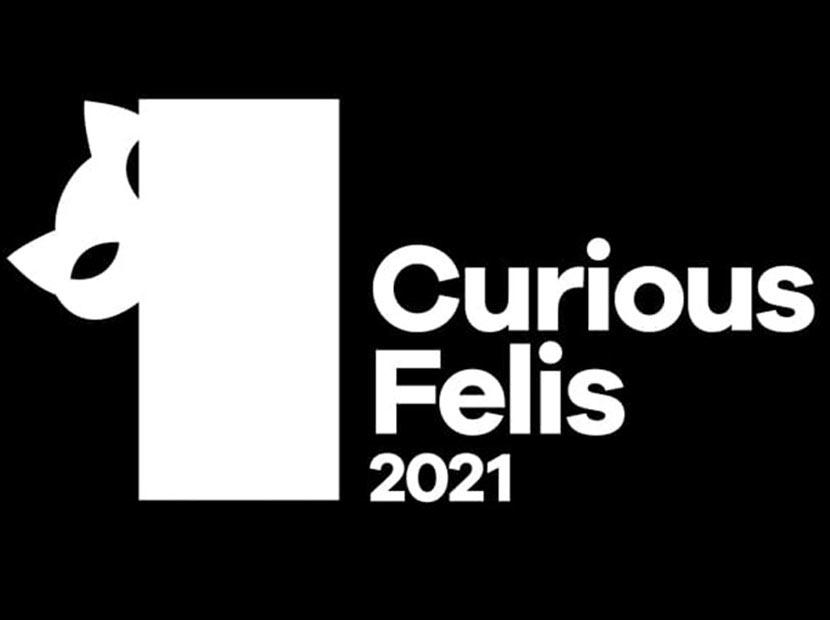 Curious Felis başvuruları uzatıldı