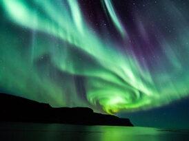 Fotoğraf karşılığında İzlanda seyahati