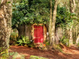 Winnie the Pooh'nun ağaç evi Airbnb'de